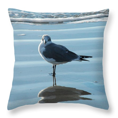 Beach Throw Pillow featuring the photograph Seagull At Attention by M E Wood