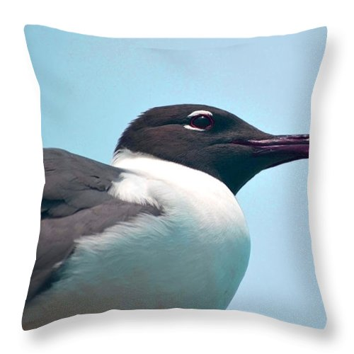 Seagull Throw Pillow featuring the photograph Seagull Portrait by Sandi OReilly