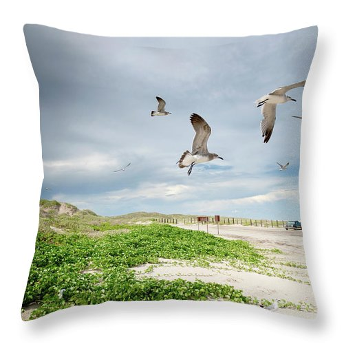 Scenics Throw Pillow featuring the photograph Seagulls In Flight At North Padre by Olga Melhiser Photography