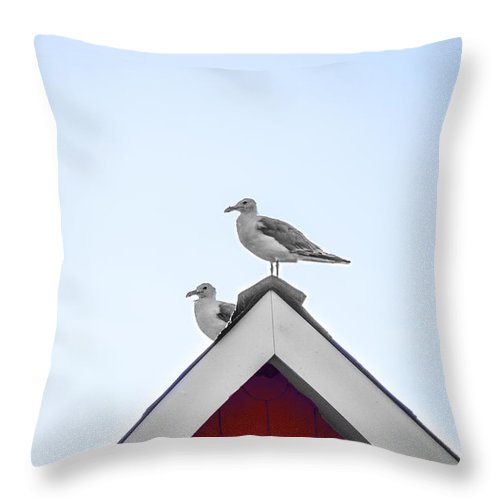Seagulls Throw Pillow featuring the photograph Seagulls Perched On The Rooftop by Bill Cannon