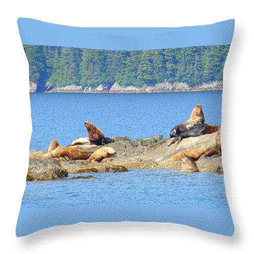 Alaska Throw Pillow featuring the photograph Seals 3 by Lew Davis