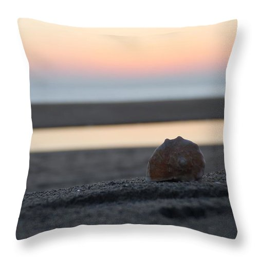 Conch Throw Pillow featuring the photograph Seashell Before Sunrise by Robert Banach