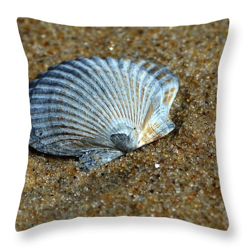 Seashell Throw Pillow featuring the photograph Seashell On The Beach by Bill Swartwout Fine Art Photography