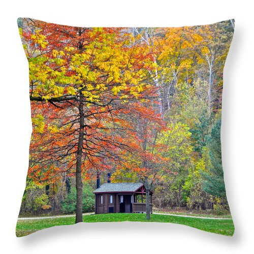 Autumn Throw Pillow featuring the photograph Seasonal Sensation by Frozen in Time Fine Art Photography