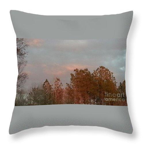 Photo Throw Pillow featuring the photograph Seasonably Fall by Sandra Harrison