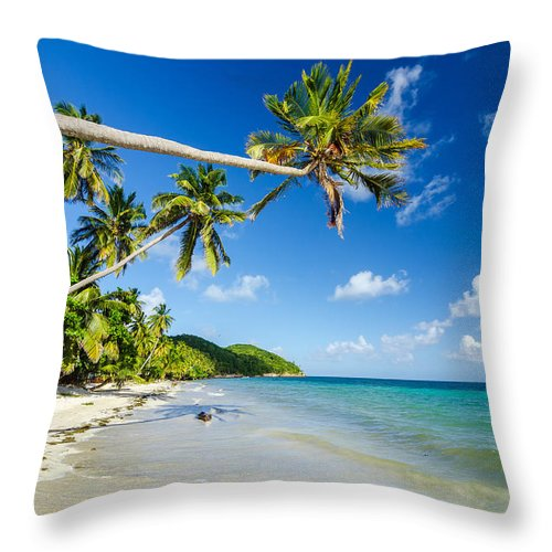 Bay Throw Pillow featuring the photograph Secluded Beach by Jess Kraft