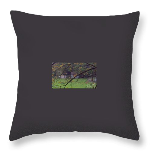 Landscape Throw Pillow featuring the photograph Secret Cabin by Lisa Byrne