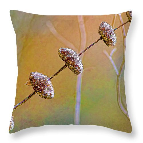Seed Pod Throw Pillow featuring the photograph Seed Pod Pagoda by Gary Holmes