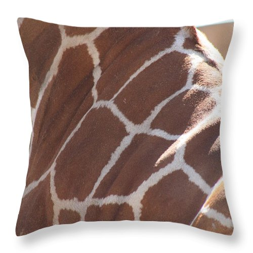 Giraffe Throw Pillow featuring the photograph Seeing Spots by Brandi Maher