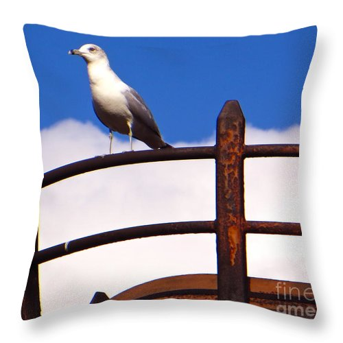 Gulls Throw Pillow featuring the photograph Sentinel Sea Gull by Joy Hardee