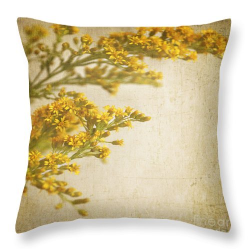 Square Format Throw Pillow featuring the photograph Sepia Gold by Lyn Randle