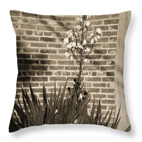Sepia Throw Pillow featuring the photograph Sepia Yucca by Gary Richards