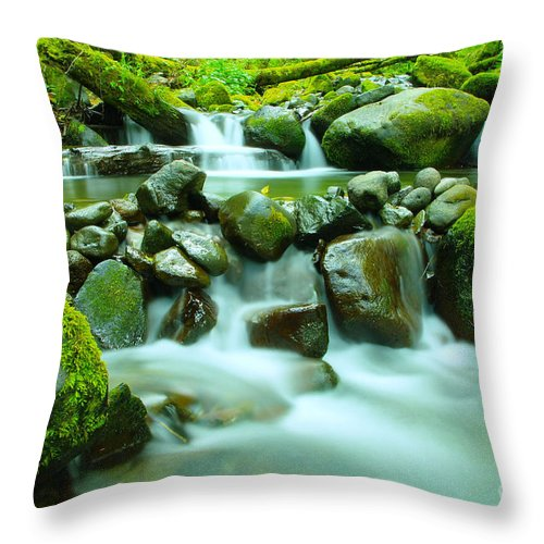 Water Throw Pillow featuring the photograph September Stream by Jeff Swan