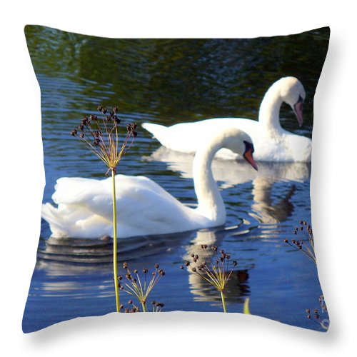 Thanksgiving Day Throw Pillow featuring the photograph Serenade Of Love by Lingfai Leung
