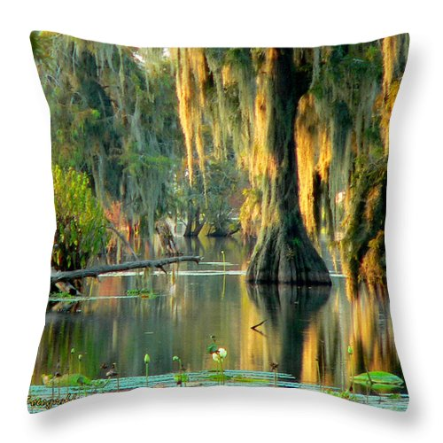 Lake Martin Throw Pillow featuring the photograph Serenity by Kimo Fernandez