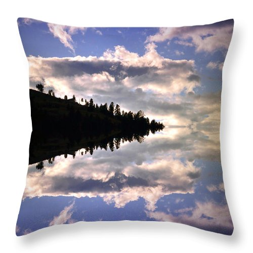 Light Throw Pillow featuring the photograph Serenity by Tara Turner