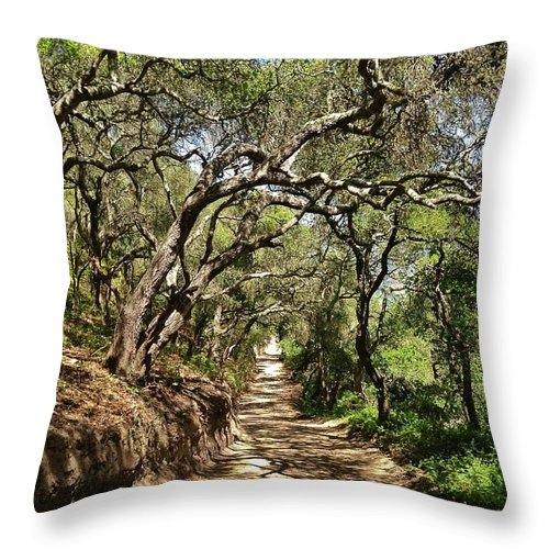 Oak Trees Throw Pillow featuring the photograph Shaded by Caroline Lomeli