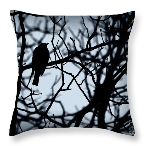 Bird Throw Pillow featuring the photograph Shadow Among The Shadows by Kenny Glotfelty
