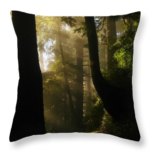 Trees Throw Pillow featuring the photograph Shadow Dreams by Jeff Swan