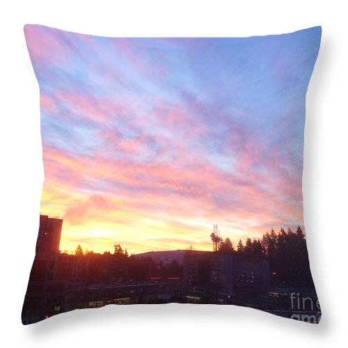 Color Throw Pillow featuring the photograph Shadows And Color In The Pacific Northwest by Alexander Van Berg