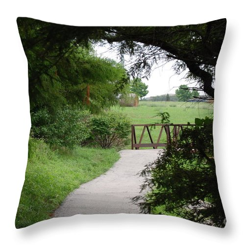 Nature Throw Pillow featuring the photograph Shady Path by Mark McReynolds