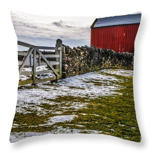 M C Story Throw Pillow featuring the photograph Shakertown Red Barn by Mary Carol Story