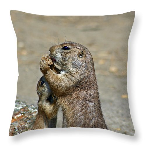 Prairie Dog Throw Pillow featuring the photograph Sharing by David Rucker