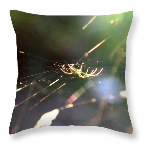 Spider Throw Pillow featuring the photograph She Lies In Wait by Maria Urso