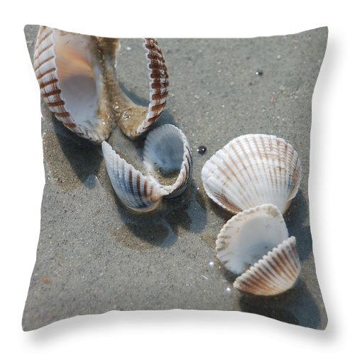 Sea Shell Throw Pillow featuring the photograph She Sells Sea Shells by Suzanne Gaff