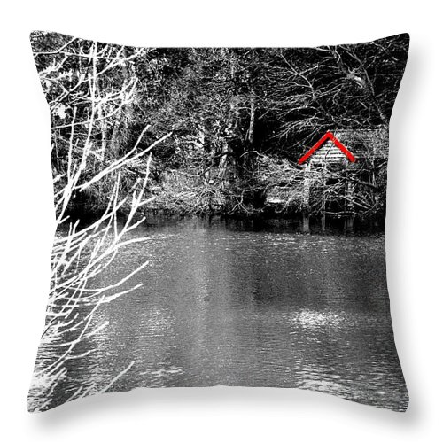 Black Throw Pillow featuring the photograph Shed on the lake by Christopher Rowlands