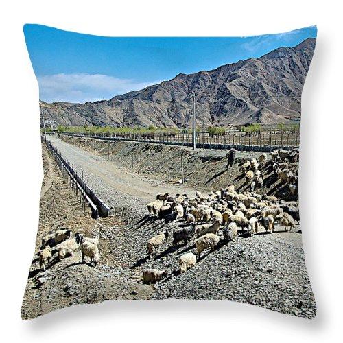 Sheep Crossing The Road To Shigatse Throw Pillow featuring the photograph Sheep Crossing The Road To Shigatse-tibet by Ruth Hager