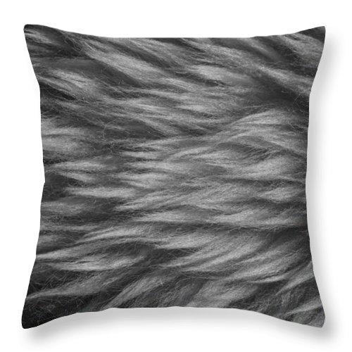 Sheepskin Throw Pillow featuring the photograph Sheepskin by Chevy Fleet