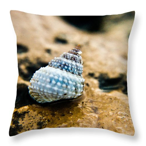 Shell Throw Pillow featuring the photograph Shell by Norchel Maye Camacho
