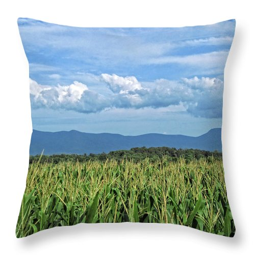 Corn Throw Pillow featuring the photograph Shenandoah Corn by Lara Ellis