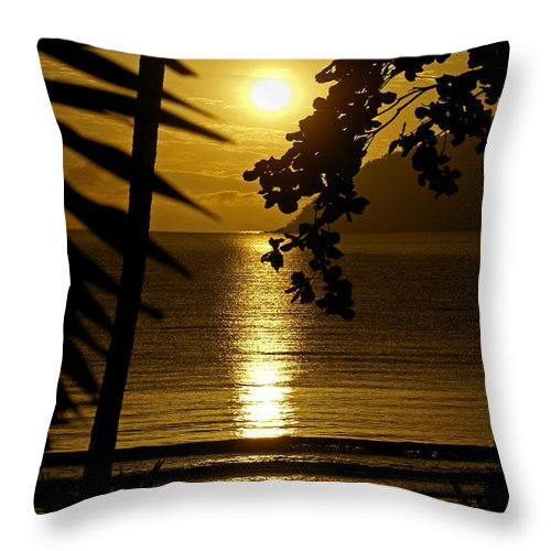 Landscapes Throw Pillow featuring the photograph Shimmer by Holly Kempe
