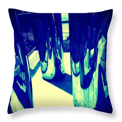 Landscape Throw Pillow featuring the photograph Shine On by Barbara Christensen