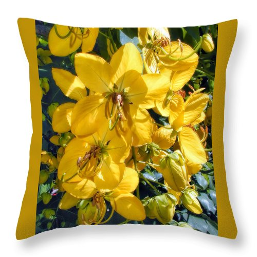 Hawaii Throw Pillow featuring the photograph Shower Tree 9 by Dawn Eshelman