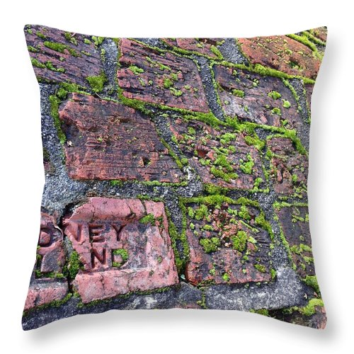 Brick Throw Pillow featuring the photograph Sidney Island Brick by Shelley Lewis