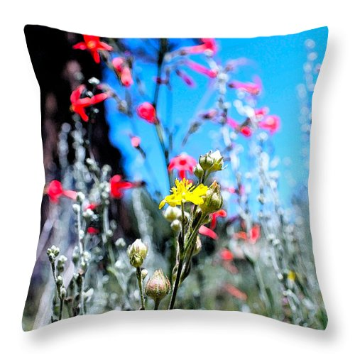 Eastern Sierra Photographs Throw Pillow featuring the photograph Sierra Wild Flowers II by Mayhem Mediums