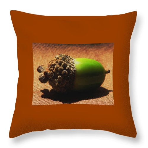 Acorn Throw Pillow featuring the photograph Signs Of Autumn by Angela Davies