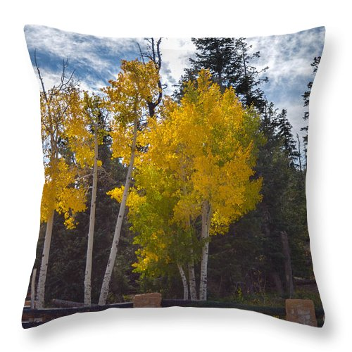 Brown Throw Pillow featuring the photograph Signs Of Winter by Rich Priest