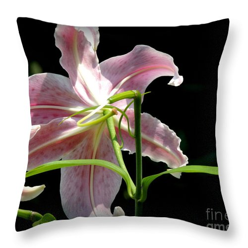 Lily Throw Pillow featuring the photograph Silent Peaceful Beauty by Rabiah Seminole