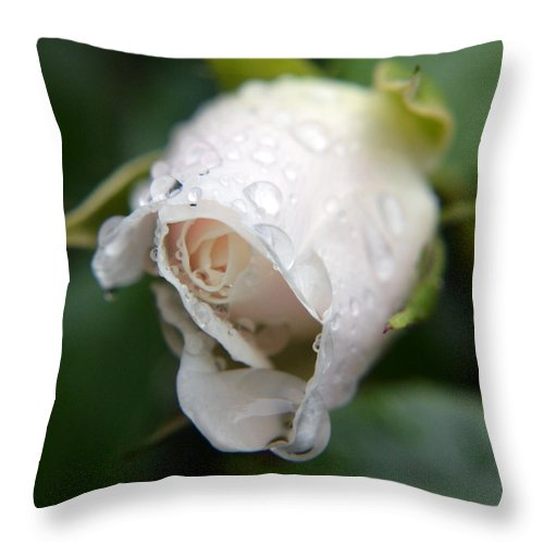 Nature Throw Pillow featuring the photograph Silent Scream by Sebastiano Secondi