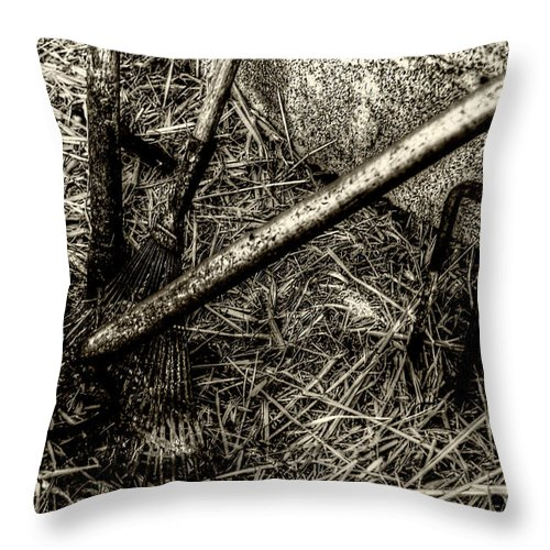The Rusty Barn Throw Pillow featuring the photograph Silent Workers by Doc Braham