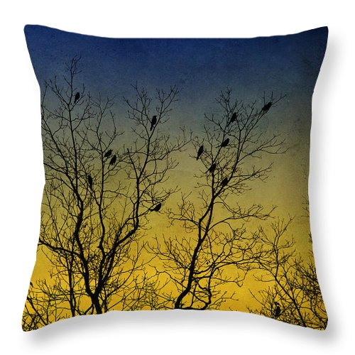 Silhouette Bird Throw Pillow featuring the mixed media Silhouette Birds Sequel by Christina Rollo