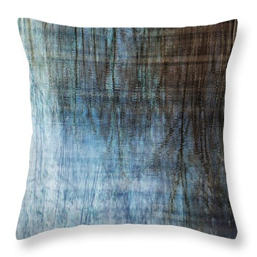Terry Bird Decorative Pillow : Silk Meditations Throw Pillow for Sale by Terry Rowe - 20