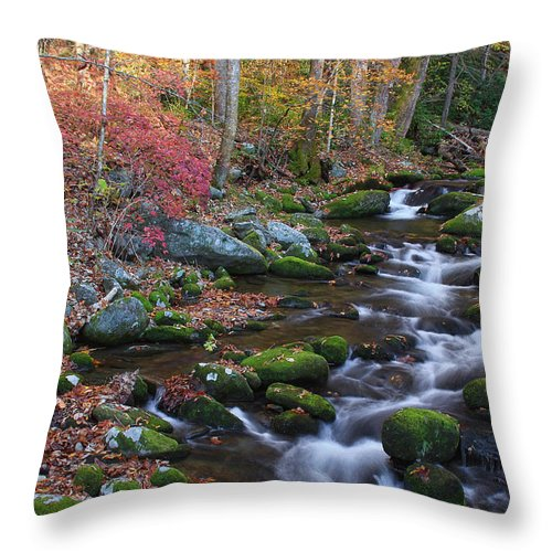 River Throw Pillow featuring the photograph Silky Flow by Shari Jardina