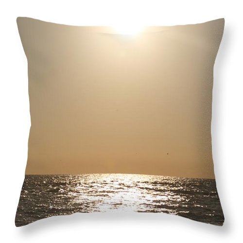 Silver Throw Pillow featuring the photograph Silver and Gold by Nadine Rippelmeyer