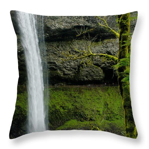 Pacific Throw Pillow featuring the photograph Silver Falls 3 by Nick Boren