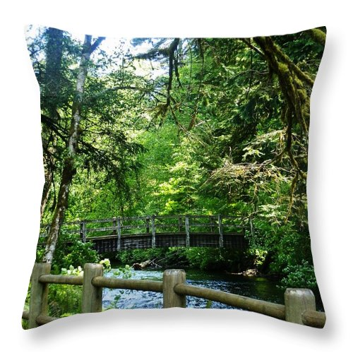 Trees Throw Pillow featuring the photograph Silver Falls Stream by VLee Watson